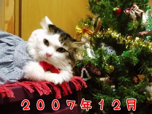 2007.12.jpg