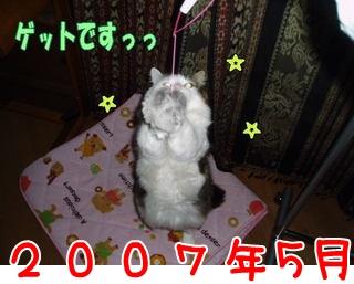 2007.5.jpg