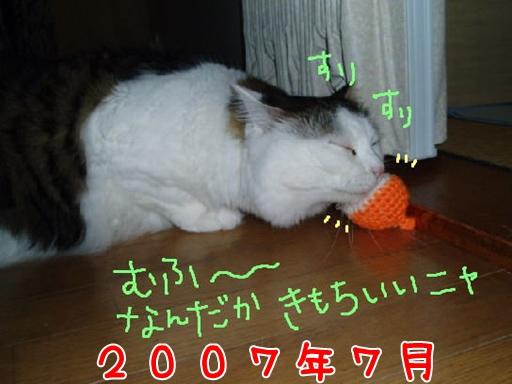 2007.7.jpg