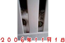 c5baf928c8be37841a6c56d2c813543e.jpg