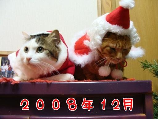 2008.12.jpg